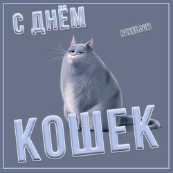 Открытка на день кошек! Картинка. С днем кошек.