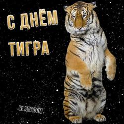 Открытка с днем тигра! Картинка тигр!