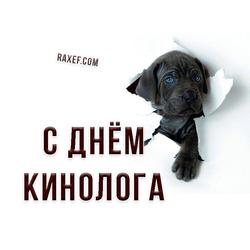 С ДНЕМ КИНОЛОГА!