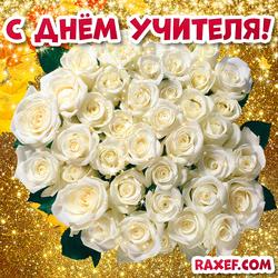 Красивая открытка с днём учителя! Букет белых роз на золотом фоне! Картинка учительнице!