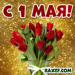 Открытка с 1 мая! День солидарности трудящихся! Тюльпаны! Картинка с красными тюльпанами!
