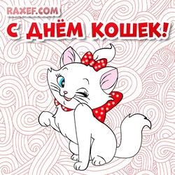 Открытка с днем кошек! Картинка с красивой маленькой белой кошкой! 8 Августа!