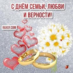 Поздравление с днем семьи, любви и верности! Картинка, открытка! Ромашки! Поздравление красивое! Новое!