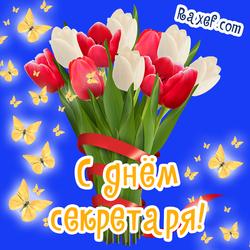 Тюльпаны! Поздравление подруге на день секретаря! Новые открытки с днём секретаря женщине, подруге, коллеге! Красивые открытки с цветами! Цветы! Открытка с днем секретаря!