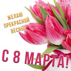 Розовые тюльпаны на 8 марта! Букет цветов для женщины! Картинка! Открытка!