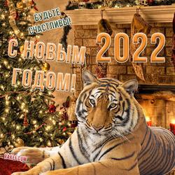 С новым 2022 годом тигра! Тигр! Открытка! Картинка!