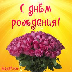 С днем рождения женщине! Открытка, картинка с розами! Розы!