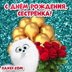 С днем рождения, сестра! Поздравления, стихи, картинки! Розы, Гиджет, шарики! Открытка!