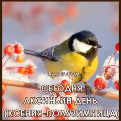С днём Ксении-полузимницы (открытка, картинка, поздравление)