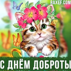 Картинка, открытка на день Доброты! Поздравление своими словами! Скачать!