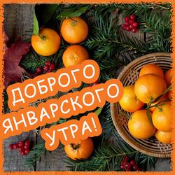 Доброго утра января! Открытка с мандаринами!