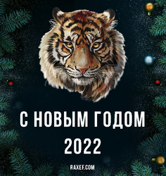 Открытка с тигром на тёмном (чёрном) праздничном фоне с новогодними игрушками и ёлочными ветками. С праздником. С новым 2022 годом!