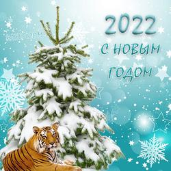 Яркая открытка, картинка с новым годом тигра 2022! Красивая картинка на новогоднем фоне с ёлкой в снегу и тигром!