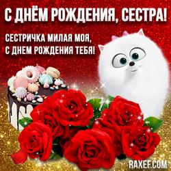 Блестящая открытка! С днем рождения, сестра! Картинка! Розы, собака Гиджет, вкусный торт!