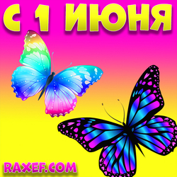 Открытка, картинка с бабочками на 1 июня! Бабочки очень красивые, яркие прилетели к вам в первый...