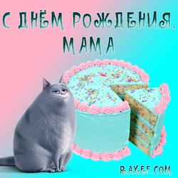 Открытка с кошкой Хлоей! Маме на день рождения! Хлоя и торт! Картинка в нежных розово-голубых тонах!  Дорогая...