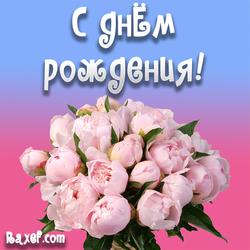 Открытка с пионами, цветами! С днем рождения женщине!
