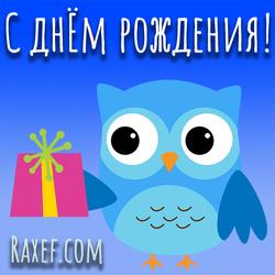 Открытка с совой! С днем рождения девушке, девочке! Сова с подарком!