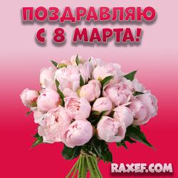 Поздравляю с 8 марта! Пионы! Открытка, картинка с пионами для милой женщины! Дорогие дамы, от души...