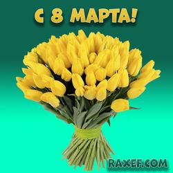 С 8 марта! Тюльпаны! Открытка с жёлтыми тюльпанами! Картинка на 8 марта! Скачать можно бесплатно!...
