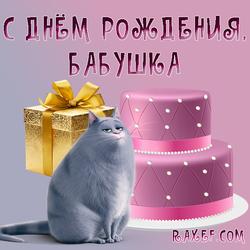 С днём рождения бабушке от внучки, от девочки! Картинка с розовым тортом, кошкой Хлоей и с золотой подарочной коробкой!...