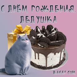 С днём рождения дедушке от внучки, от девочки! Открытка с кошкой Хлоя, тортом Орео и подарочной золотой коробкой! ...