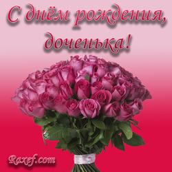 С днём рождения, доченька! Открытка с букетом роз! Картинка для дорогой дочки от мамы и папы! Дорогая наша, сладкая...