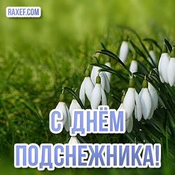 Красивая открытка на 19 апреля! С днем подснежника! С весной всех!