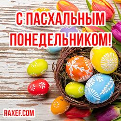 Красивая открытка с Пасхальным Понедельником! Картинка с крашенными яйцами!