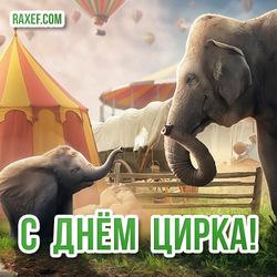 Красивая открытка со слонами на день цирка! Картинка!