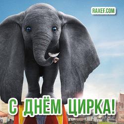 Красивая открытка со слоником на 21 апреля! Картинка на день цирка! Слон! Слонёнок!