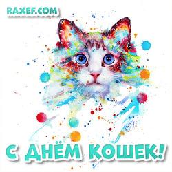 Открытка на день кошек! Картинка на 8 августа! Август!