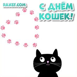 Открытка с днем кошек! Красивая открытка с черным котом и сердечком!