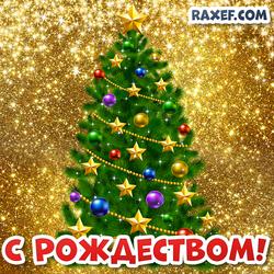Открытка с Рождеством Христовым! Картинка с рождественской ёлкой! Ёлка на праздник!