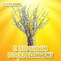 Открытка с вербным воскресеньем! Картинка с красивыми веточками вербы в вазе и на ярком фоне!