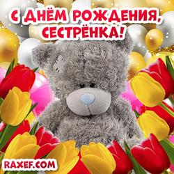 Открытки с днем рождения сестре! Мишка Тедди и тюльпаны! Шарики и золотой фон!