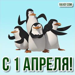 С 1 апреля! Прикольная открытка с пингвинами на 1 апреля!