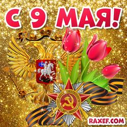 С 9 мая! Открытка с тюльпанами и георгиевской лентой с гербом РФ! Картинка на день победы!