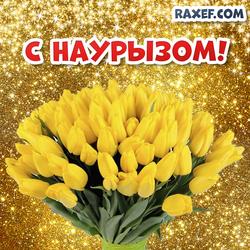 С Наурызом! Открытка, картинка на Наурыз! Тюльпаны! Золотой фон!