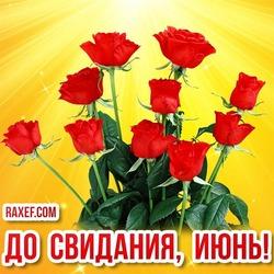 До свидания, июнь! Красивая открытка с цветами! Картинка с розами! Прощай, июнь! До свидания!