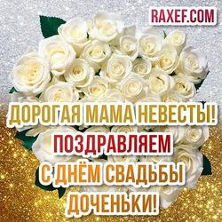 Маме невесты! Открытка с белыми розами на золотом и серебряном фоне! Картинка с красивой большой надписью! Поздравление маме невесты!