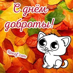 Открытка с днём доброты! Картинки с котом и осенними листьями! День добра! 13 ноября! Праздник!