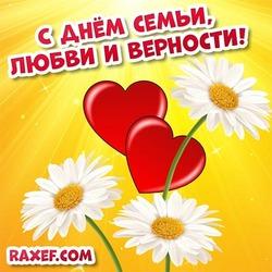 Открытка с ромашками! Картинка День семьи, любви и верности! Скачать!