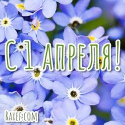 Весенняя открытка с цветами! С апрелем всех! 1 апреля! Картинка, открытка!