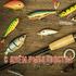 День рыболовства! Открытка на день рыболовства! С праздничком вас... Страница 1