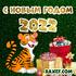 Открытки с новым 2022 годом! Поздравления с новым годом тигра! Новый год - мой любимый праздник! Как жаль, что... Страница 8