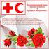 Поздравления на Международный День Красного Креста и Красного полумесяца! На нашей планете много есть праздников и... Страница 1