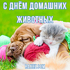 Всемирный день домашних животных. Открытка к празднику. Красивая картинка. Всех владельцев кошек, собак, хомячков, морских... Страница 1