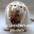Открытки на всемирный день крысы!
