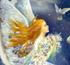 День Ангела: Оксана, Анатолий, Богдан, Василий, Виктор, Владимир, Герман, Ефим, Иван, Ксения, Леонид, Михаил, Николай, Петр, Серафима, Степан, Федор, Юлиан